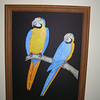 Blue and Yellow Macaws, acrylic on wood, 18x24, july 2006 (