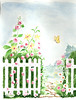Picket Fence and Flowers