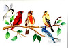 Five colorful birds in a tree.