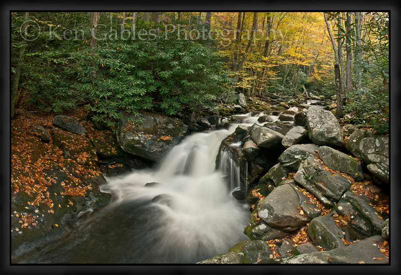 Lynn Camp Prong, Middle Prong of the Little River, Great Smoky Mountain National Park, Tennessee
