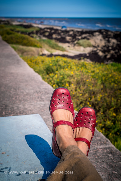 Oct. 18, 2014 - Red Shoes soaked up the sun at the beach in Galveston, Texas.