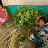 Stacking Betel Leaves in Khashia Village - Srimongal, Bangladesh