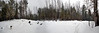 Sunday, March 4, 2012  The Outback  This is a 4-frame panorama of the cleared area behind the house and barn. On the left, Baldr is heading into the future blueberry area. On the right,  the path in the new snow leads to the future pasture  where I am busy burning brush - note the whisp of smoke. In the middle, Caspian's hoofprints are heading up the Wilderness Trail.   Please choose X3 for best viewing.