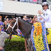 Constitution wins the 2014 Florida Derby at Gulfstream Park. Coglianese Photos/Leslie Martin