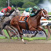 Authenticity wins the 2013 Shuvee.<br /> Coglianese Photos