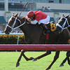 Millennia wins the 2013 TaWee Stakes. Coglianese Photos/Kenny Martin