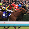 Red Reveur wins the Hanshin Juvenile Fillies. Naoji Inada Photo