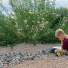Reese's homework involved reading to a plant ;)