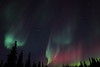 Colorful Northern Lights at the Arctic Circle in Alaska on March 17, 2013 - 01:03 AM<br /> <br /> Canon 5D MKII with EF 24mm f/1.4L II