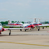 Snowbirds Return
