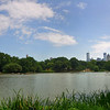 Another HDR. New York, Manhattan, Central Park.