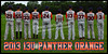 2013 13U PANTHER ORANGE TEAM POSTER NO COACHES BACK COLOR