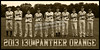 2013 13U PANTHER ORANGE TEAM POSTER NO COACHES TINT