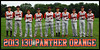 2013 13U PANTHER ORANGE TEAM POSTER NO COACHES COLOR