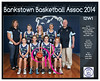 Team 2014 Bankstown 12W1 - _WEB