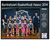 Team 2014 Bankstown 12M2 - _WEB