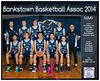 Team 2014 Bankstown 16M1 - _WEB