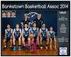 Team 2014 Bankstown 14M1 - _WEB