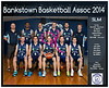 Team 2014 Bankstown SLM - _WEB