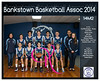 Team 2014 Bankstown 14M2 - _WEB