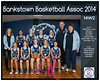 Team 2014 Bankstown 14W2 - _WEB