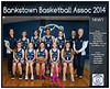 Team 2014 Bankstown 14W1 - _WEB