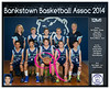 Team 2014 Bankstown 12M1 - _WEB