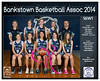 Team 2014 Bankstown 16W1 - _WEB