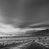 Mono Lake Landscape.<br /> Mono Lake, California, USA 2014.<br /> Ideal Print Format: 1:2 Pano.