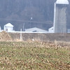 "Snowy Owl <br> IL Hwy 127 just south of Greenville <br> Bond County, Illinois, US <br> <br> <span class=""noShowSmart""> <a href=""/MyKeywords/Bird-Videos/n-gF9bt/i-MCdPcbP/A""> <span style=""color:yellow !important"">Click here to open video in lightbox</span></a> </span>  <span class=""noShowGallery""> <a href=""m/Birds/2014-Birding/Birding-2014-December/2014-12-27-Snowy-Owl/i-MCdPcbP/A""> <span style=""color:yellow !important"">Click here to open video in lightbox</span></a> </span>"