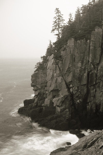 Sea Cliff and Mist, Quoddy Head State Park, Maine