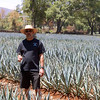 Ralph in agave field PROCESSED