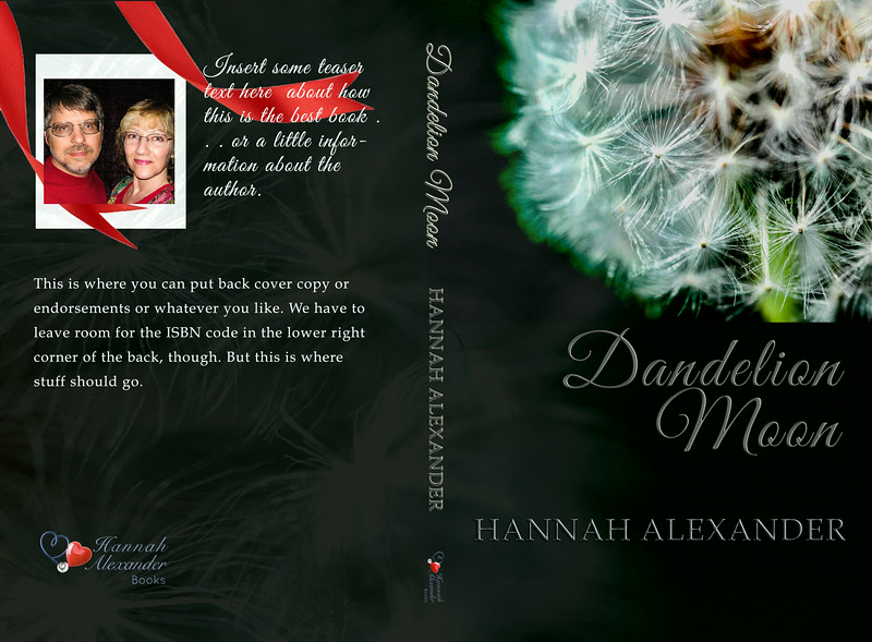 Cover in progress for Hannah Alexander.