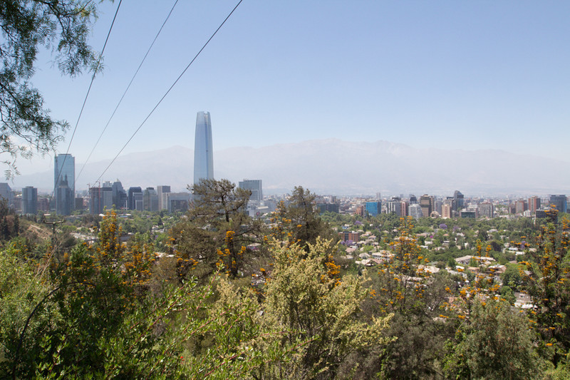 "Grevillea robusta in front. In the distance the Gran Torre Santiago (Spanish for ""Grand Santiago Tower""), previously known as Torre Gran Costanera, 64-story tall skyscraper"