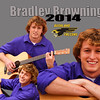 Bradley collage