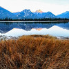 Pond with Athabasca Mountain Range in the background on the Hinton Highway outside Jasper
