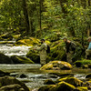 Fly Fishermen and Guide