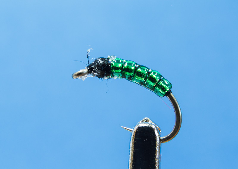 "01_CRoberts_""Green Shad Nymph"""