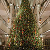 BLOOMINGDALES TREE