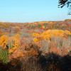 TINKERS CREEK GORGE FALL COLOR