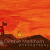 Debbie Markham Cambria Photographer - California Beach + Countryside Destination Vacation