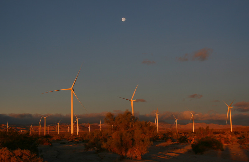 Wind turbines near Ocotillo