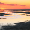 Tidal Flats at Sunset, Cape Cod