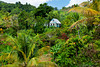 A mountain home with tropical vegetation in rural St. Lucia, Caribbean, West Indies.