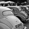 A row of Morris Minors