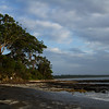 Dawn at Husky (Huskisson) Jervis Bay Australia