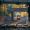 Mattapan line in the fall.