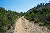 20140704Rose Canyon3943