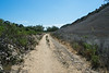 20140704Rose Canyon3947
