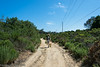 20140704Rose Canyon3942